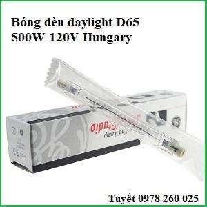Bóng đèn daylight D65-500W-GE (Hungary)
